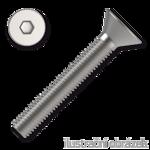 Hexagon socket countersunk head screw DIN7991 M6x30, cl.10.9, white galvanized