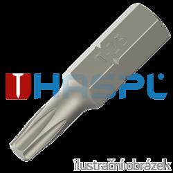Point Torx TX 25 - length 25 mm